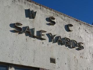 Warragul Shire Council Saleyards