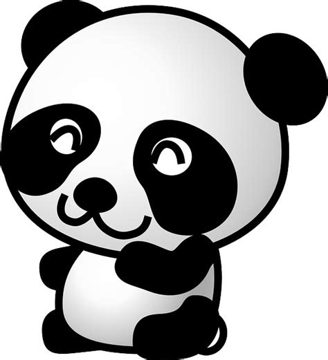 panda bear animal  vector graphic  pixabay
