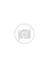 Front Load Washers: Kenmore Front Load Washer Parts Diagram
