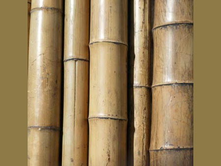 bamboo_pole (450x338, 95Kb)