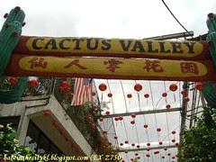 ch - cactus valley
