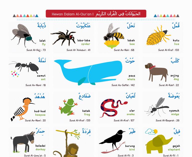 Belajar Nama Hewan - Wallpaper Books