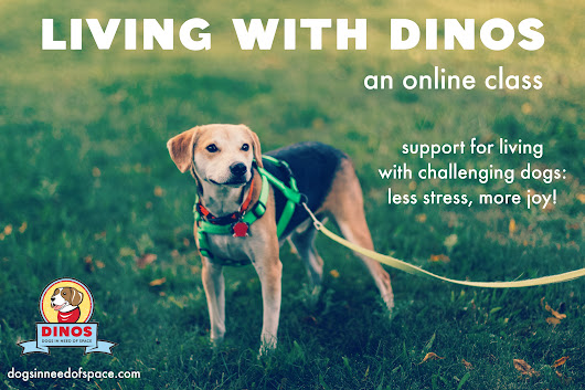 Living with DINOS is now an ONLINE Class!