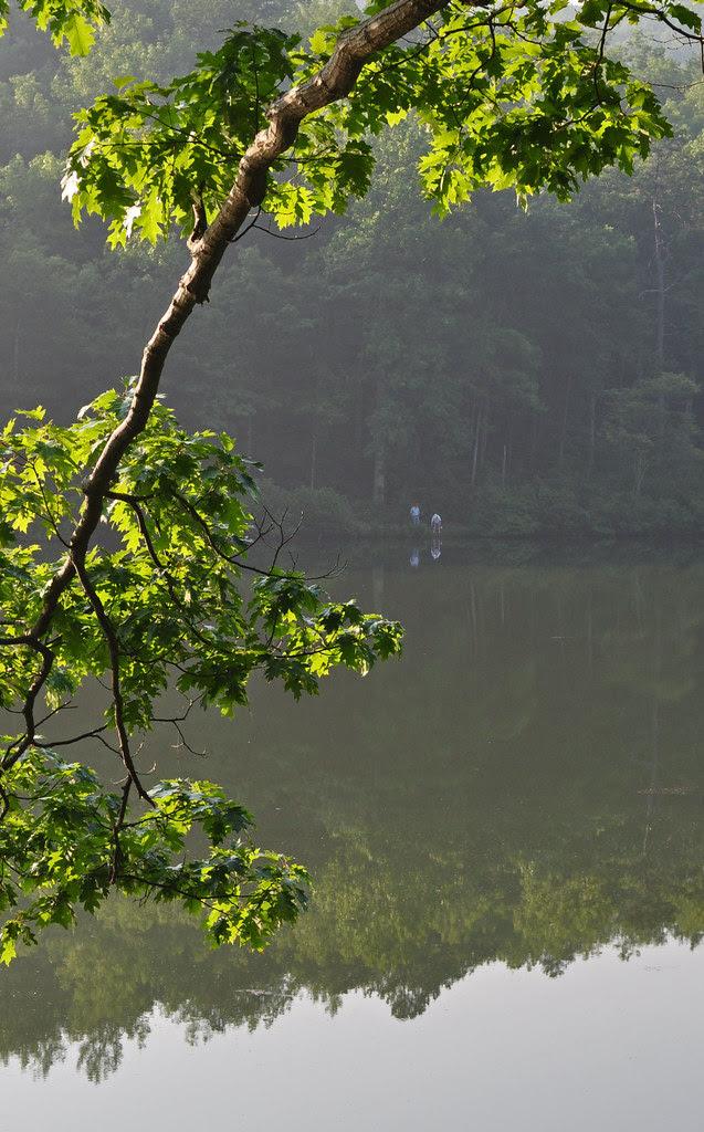 Sherando Lake (25)