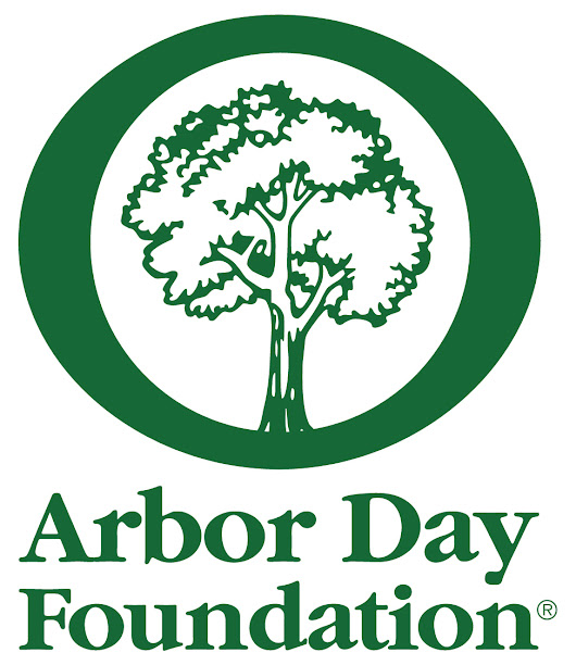 HEULE Celebrates 30th Anniversary by Donating 30 Trees to Arbor Day Foundation Hurricane Recovery Initiative