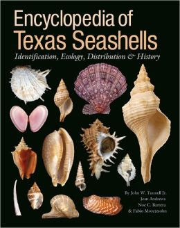 Encyclopedia Of Texas Seashells Identification Ecology Distribution And History Harte Research Institute