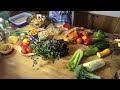 Recette Salade Quinoa Automne
