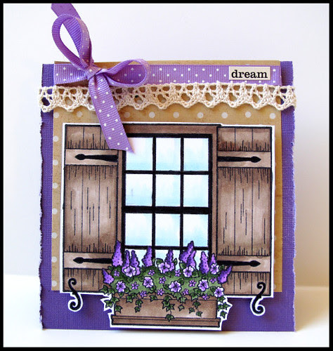 SA window box