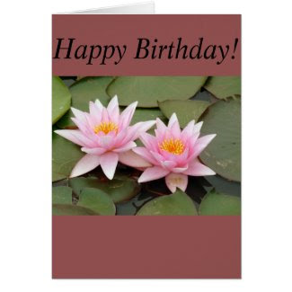 Stunning Waterlily Greeting Card