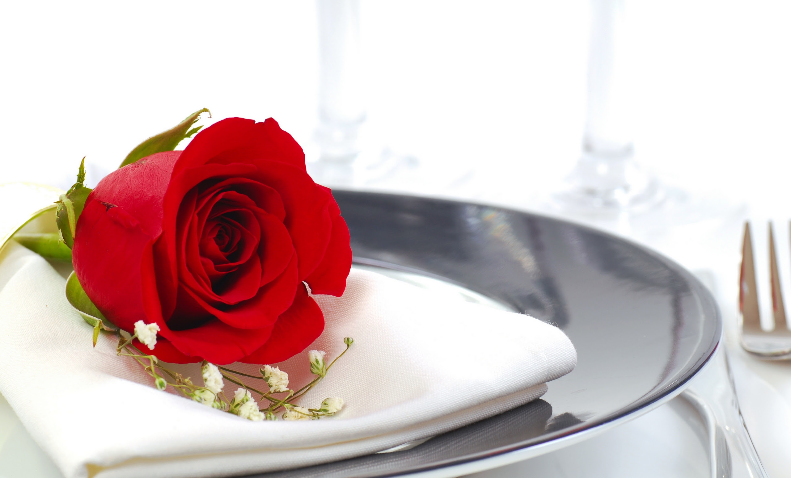 Attractive Romantic Beautiful Red Roses Roses Gallery