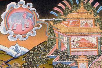 mayasdream