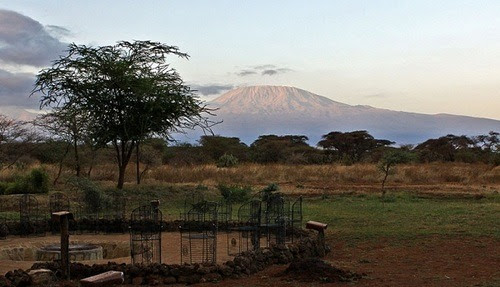 Amboseli Sopa Lodge Providing Unique Experience to Wildlife Lovers