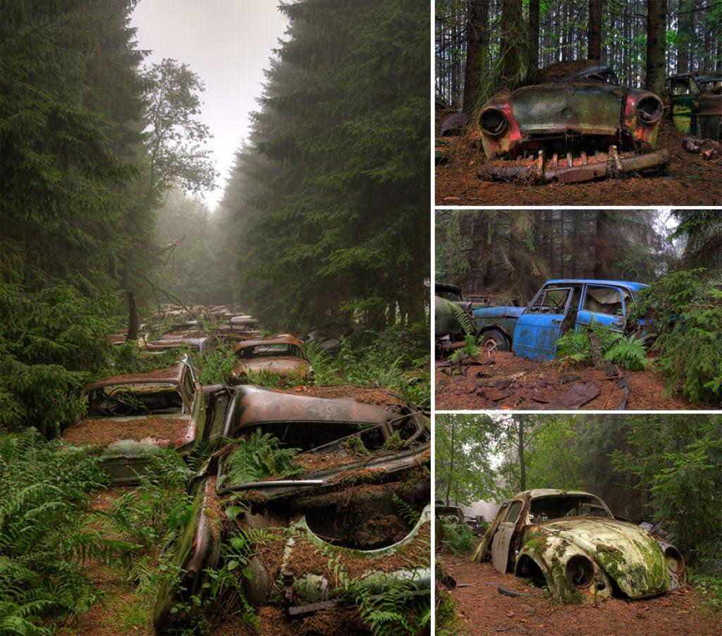 Quando a natureza cobra terreno à civilização 08