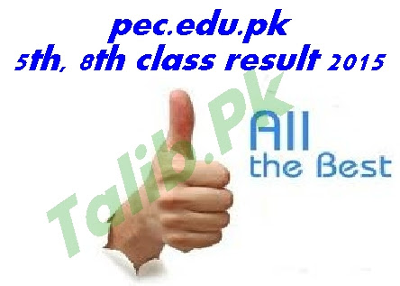 pec.edu.pk 5th, 8th Class Result 2015 Announced