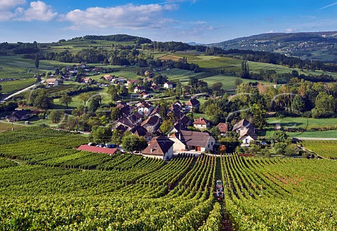 French Alps Wines and Rare Grapes – Wine Travel Media