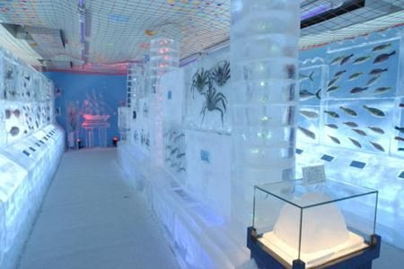 aquarium beku di jepang