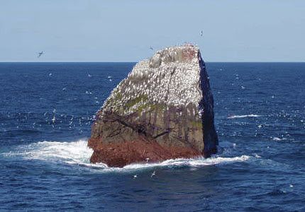 2. At the top of Rockall - rock about 30 m in diameter, protruding out of the ocean at a distance of 460 km from the coast of the UK - rose to at least 20 people since it found.  marine life, ocean, Horror