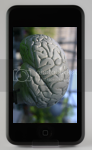 Memory Training on the iPhone/iPod Touch