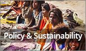 Policy & Sustainability