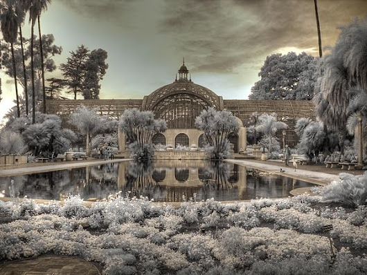 The Botanical Building Balboa Park by Jane Linders