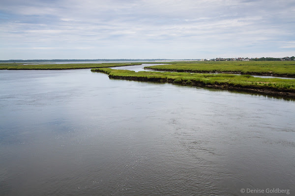 looking north, from the bridge to Plum Island