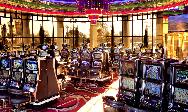 Zuma enjoy luxury playing live roulette lounge videos