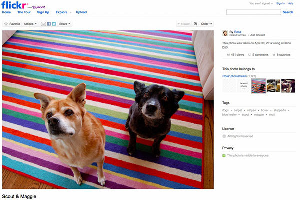 Flickr launches prettified liquid layout, brings high-resolution eye candy to the forefront