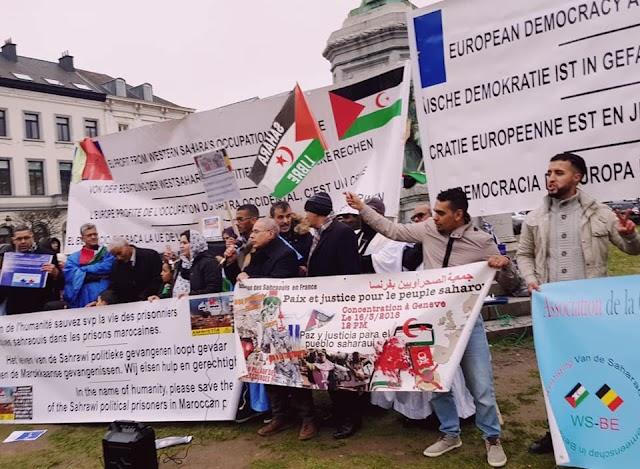 Sahara Occidental: 98 ONG sahraouies demandent aux eurodéputés de voter contre l'accord de pêche UE-Maroc