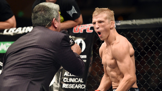 Knockout! Watch TJ Dillashaw vs Joe Soto full fight video highlights from UFC 177