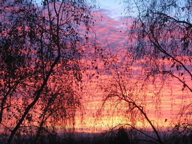 sunrise2-4