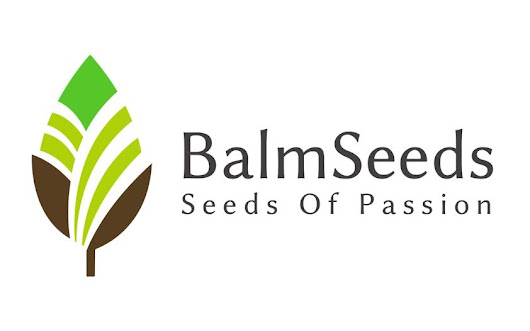 Careers at Balm Seeds Ic.