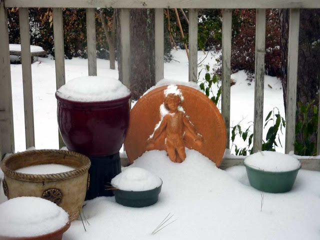 P1060112-2011-01-10-Snow-Atlanta-Cold-Medallion-False-color
