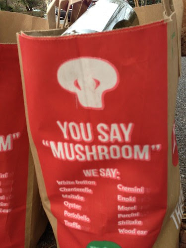 "You Say ""Mushroom.""  I Say ""Alien."""