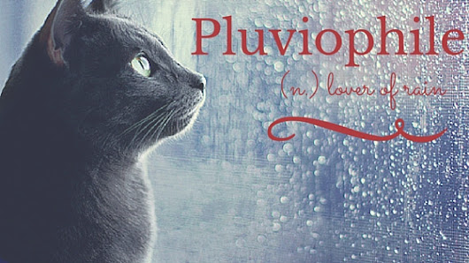 Pluviophile: (n.) lover of rain