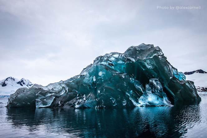 Σπάνιες φωτογραφίες ενός αναποδογυρισμένου παγόβουνου (1)