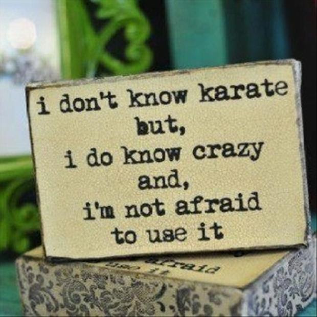 Funny Quotes I Do Not Know Karate But I Know Crazy And I Am Not