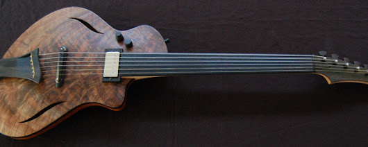 Custom Dragonfly | Beautiful Guitars
