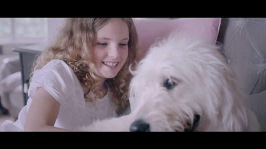 Pets Rescue Their Humans in This Touching British Ad for Animal Adoption