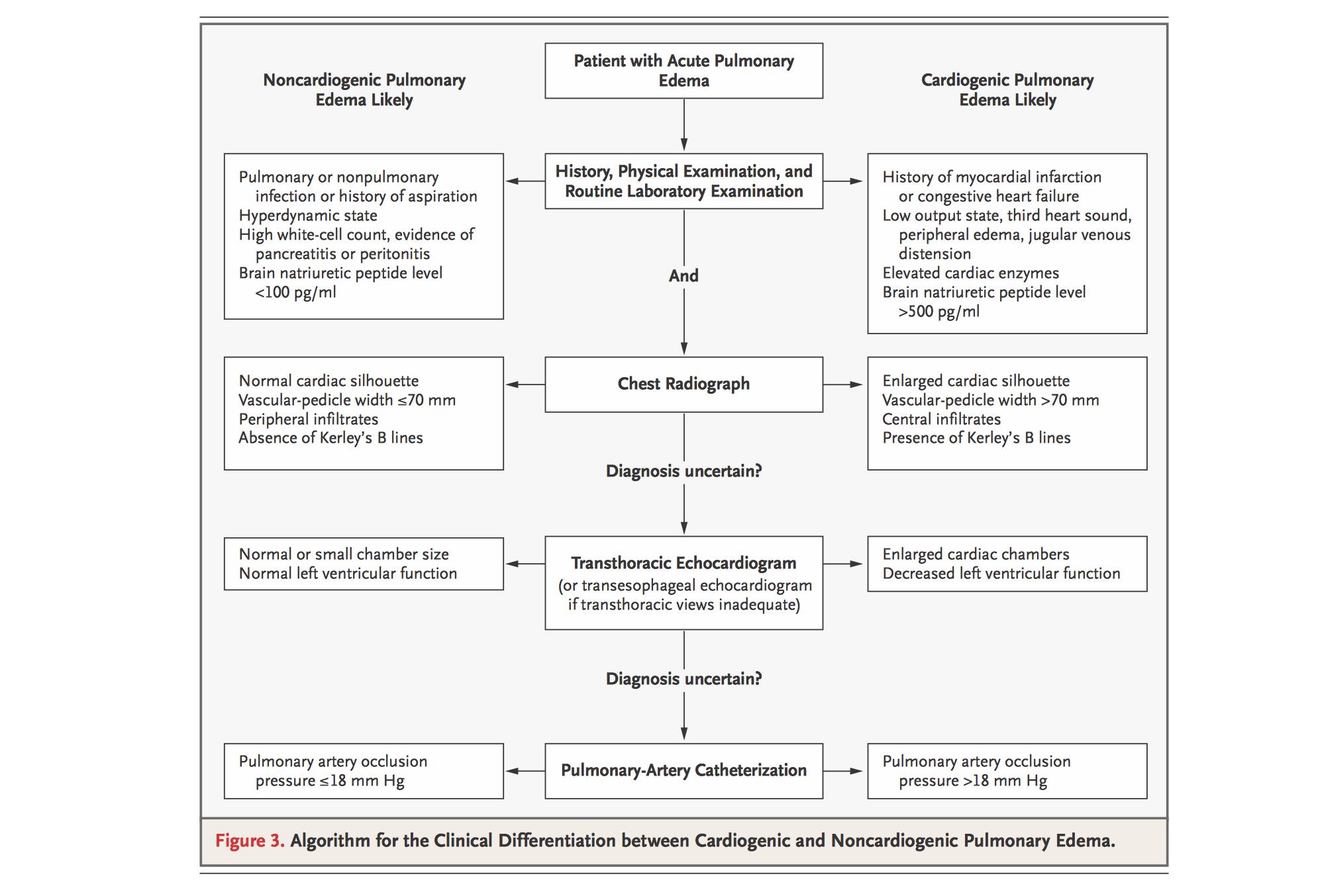 Copd Pathophysiology Concept Map - Perokok q
