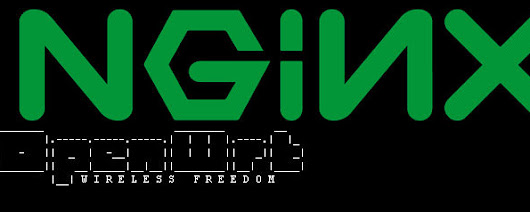 Adding SSL to NGINX on OpenWRT Chaos Calmer 15.05.1 | Life, The Universe and ... Everything!