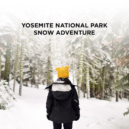 Yosemite Winter Snow Day Adventure » Local Adventurer >> Currently San Diego