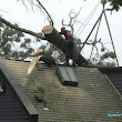 Roof Insurance Claims In Dallas, TX For Storm Damage And More!