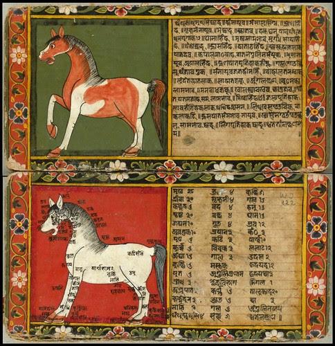 Nepal Horse Book d