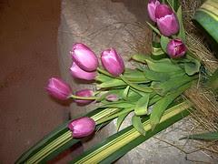 praznik cvijeća 2010.