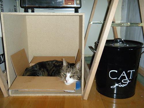 Morris and his cat food