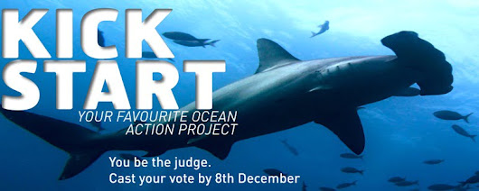 Vote for The Great Fiji Shark Count in Ocean Action Project 2013