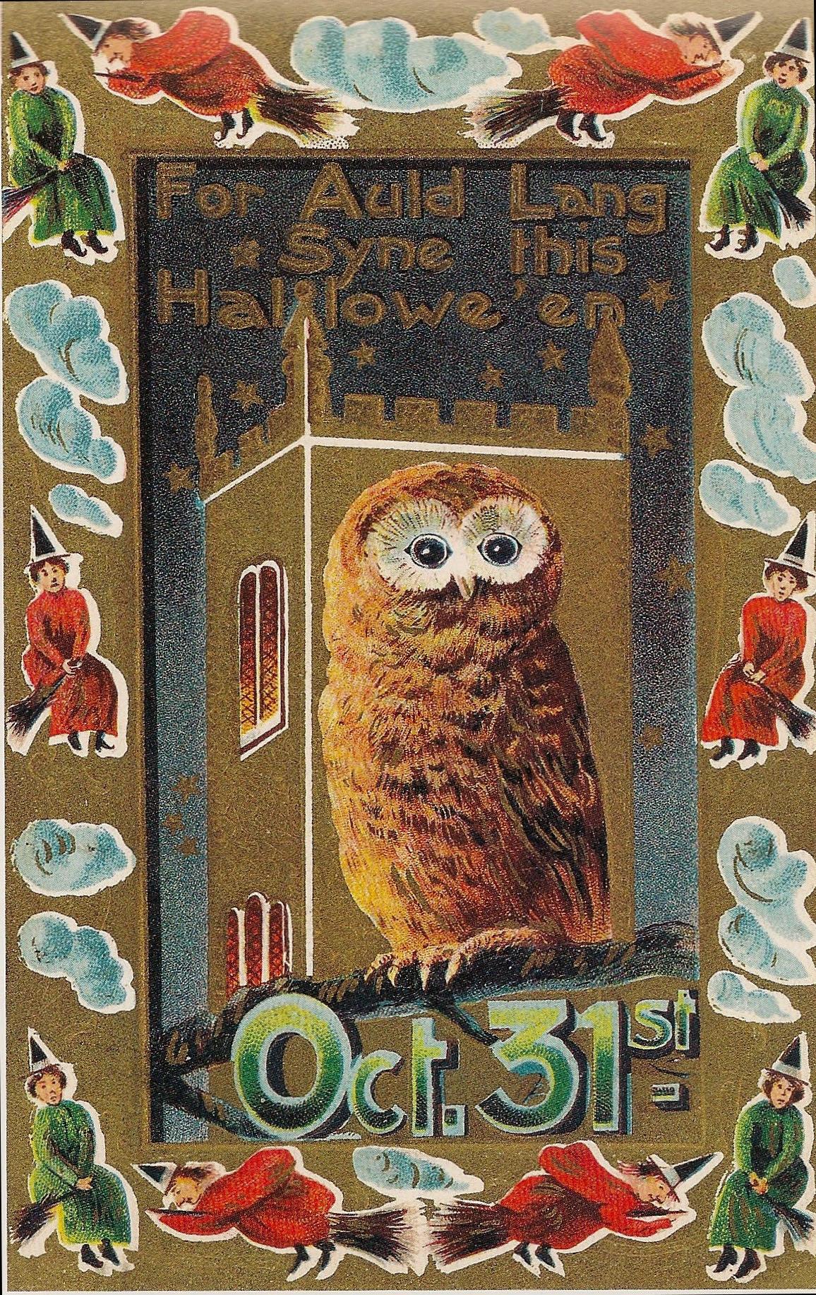 Owl Halloween Postcard