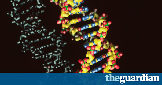 Organisms created with synthetic DNA pave way for entirely new life forms | Science | The Guardian