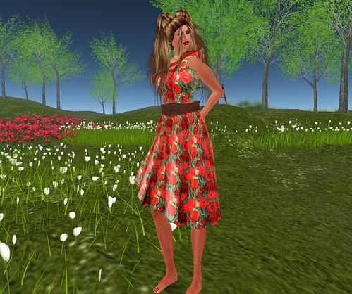 22769 poppy dress