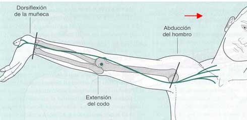 Fisioterapia tests de neurodin mica for Test fisioterapia